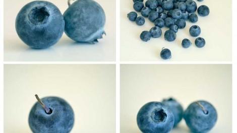 blueberry photo meditation