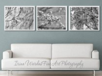 grey wall decor photos