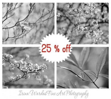black white flower photo set
