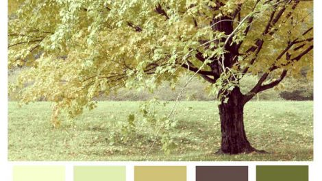 earth colors for your home decor