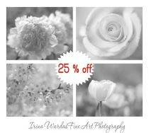 Grey and white wall art set of 4 nature photos, black and white floral art print set cottage chic, girls bedroom wall art flower bath decor
