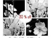 Black and white photography set flower prints wall art, 4 11x14, 8x10 botanical art gallery wall prints, modern wall decor floral artwork