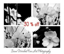 Black and white photography set flower prints wall art, 4 11x14, 8x10 botanical art gallery wall prints, modern wall decor floral artwork