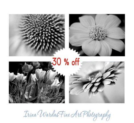 Black and white flower photography set 4 floral pictures, botanical print set 11x14, 8x10 modern art prints, dark grey wall art nature decor