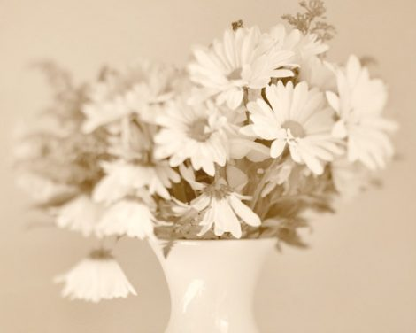 Neutral wall art still life art print, flower photography, flowers in vase, pale beige tan wall decor, daisies picture, powder room wall art