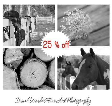 Black and white horse photography set of 4 country art print set, rustic farmhouse chic wall art, country wall art home decor, farm photos
