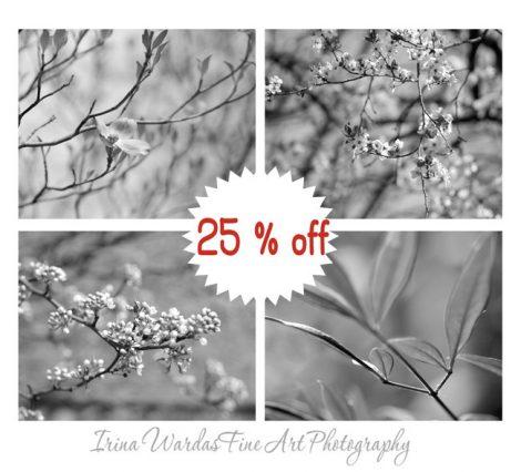 Black and white botanical prints, grey wall set 4 11x14 nature pictures, nature print set, modern photo prints, grey photographs home decor