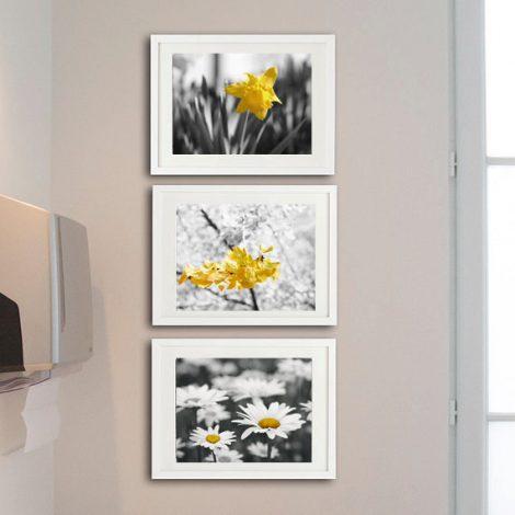Yellow grey nursery wall art, flower photogrpahy set, botanical print set, 3 11x14, 8x10 art prints, floral pictures modern gallery wall set