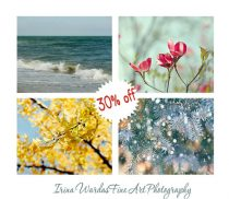 4 season wall art, four season photography set, Winter Spring Summer Autumn nature wall decor, nature art prints 11x14, 8x10 seasonal decor