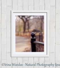 New York City Autumn photography Central Park print 11x14 park fence art, rustic New York wall art vertical print, light sparkle bokeh decor