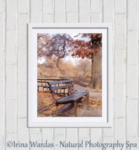 Central Park photography, park bench, New york urban decor, brown burnt orange nyc print vertical, New York City autumn, New York photograph