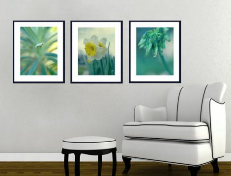 Teal wall art nature photography set, 3 botanical photo prints, turquoise art tryptic, green blue yellow 3 piece wall art set teal pictures