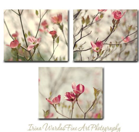 Dogwood flower canvas art, set of 3 nature canvas wraps, coral pink flower, baby girl room decor bedroom print set, olive green light yellow