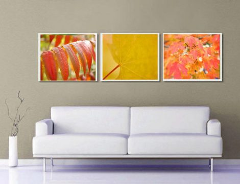 3 piece art print set, Autumn leaves photography, botanical photos red leaf wall art set, orange red nature pictures, mustard yellow decor