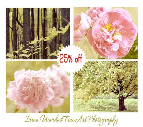 Botanical photography set of 4 art print set, nature photos, sage green pink art for bedroom, floral art tree pictures, french country art