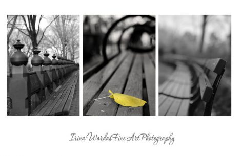 Black and white 3 piece wall art, New York City prints Central park bench art pictures, modern photography, black minimalist art foyer decor