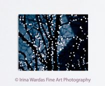 Fairy lights canvas abstract, dark night tree photography, blue black wall art canvas, light bokeh, sparkling lights, indigo blue art 24x30