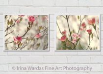 Nursery flower pictures, dogwood tree floral photography set 2 photo prints 12x12 coral pink flower prints, pale yellow olive green wall art