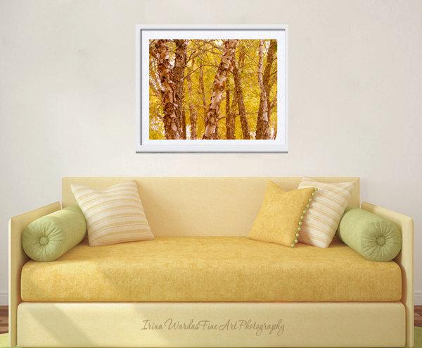 Autumn Tree Photography | Yellow Woodland Tree Wall Art | Fall ...