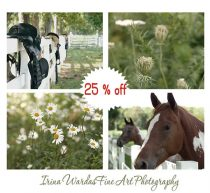 Green farmhouse art, rustic farm pictures, horse photos, country photography set of 4 8x10 wall prints nature pictures, gallery wall art set