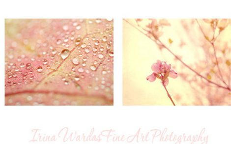 Pink and yellow nature wall art set pastel photography set of 2 prints, bathroom pictures, bathroom decor, pink peach photos for powder room