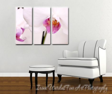 Floral split canvas art, 3 panel wall art, extra large art, orchid flower canvas tryptich, white magenta purple living room bedroom decor