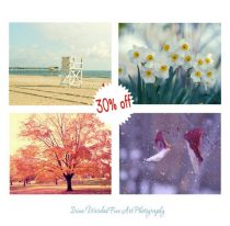 Four seasons photography set, 4 nature prints, gallery wall botanical photos 11x14, 8x10 seasonal wall art, Winter Spring Summer Fall Autumn