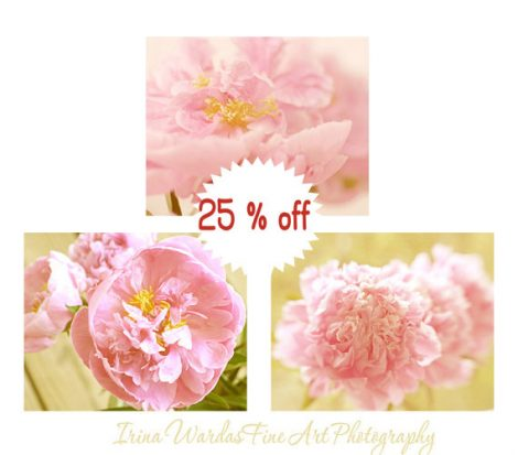 Peony photography print set, pink flower pictures 11x14 floral artwok, pastel pink peony wall art set of 3, girls room decor, bedroom art