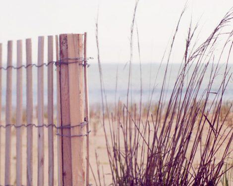 Nautical photography, beach fence grass seashore nature print 11x14, 8x10, grey beige purple artwork, coastal home decor, ocean seaside art