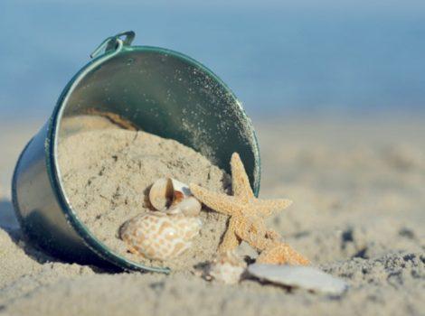 seashell buckett