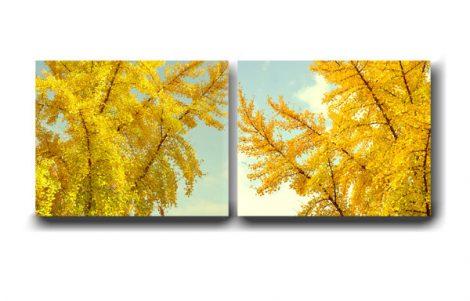 Autumn canvas wall art, tree canvas art, golden tree branch, gold yellow leaves canvas wall art set of 2, fall nature yellow art decor, aqua