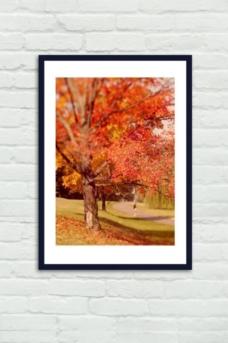 Fall tree photography, red orange wall art Autumn artwork, nature photography print 11x14, fall wall decor, vertical wall art, red leaves