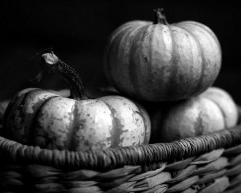 Black and white art food photography, pumpkin photo print, kitchen still life print 11x14, 24x30, kitchen wall art dining room wall decor,