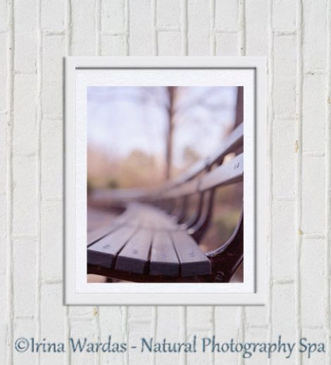 Bench photography, New York Central Park bench picture, New York City wall print 11x14, brown beige wall decor, nyc print, vertical wall art