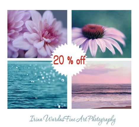 Teal pink nature photography set of 4 11x14, 8x10 pictures for bedroom, turquoise purple bathroom decor wall art, modern wall prints set