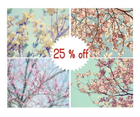 Tree branch flower photography print set pastel photos, mint floral yellow pink nature wall art, Spring botanical four 11x14, 12x12 pictures