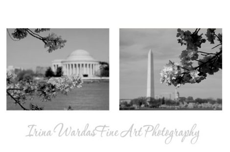 Washington DC photography, black and white wall art set of 2 prints 11x14, architecture art, Jefferson Washington momument travel pictures