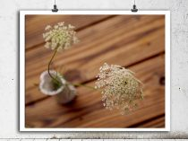 Rustic still life photography bathroom wall art, Queen Anne's lace flower print 8x10, farmhouse decor, brown wood country wall art picture