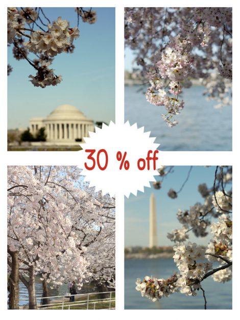 Washington DC photography, Cherry Blossom photography sakura tree, dc architecture Jefferson Washington dc wall art print set of 4, vertical