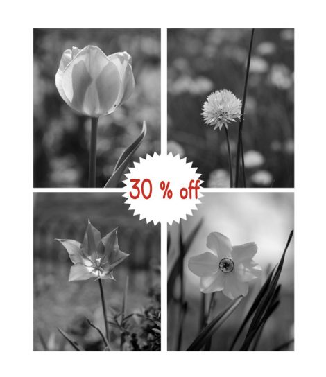 Black and white print set of 4 floral photographs, powder room vertical prints, grey wall decor, bathroom pictures 11x14 grey wall art set