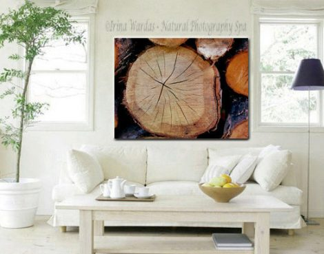 Abstract canvas art, rustic photography, wood log modern gallery wrap, indigo orange brown large wall art cabin decor, lake house wall art