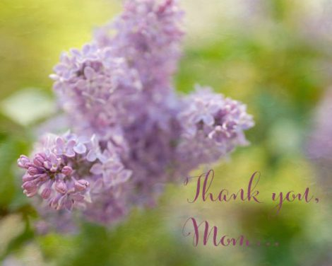 Art gift for Mother, Thank you Mom typography photo print, Moms birthday gift, mothers day gift from daughter from son, Mother in law gift