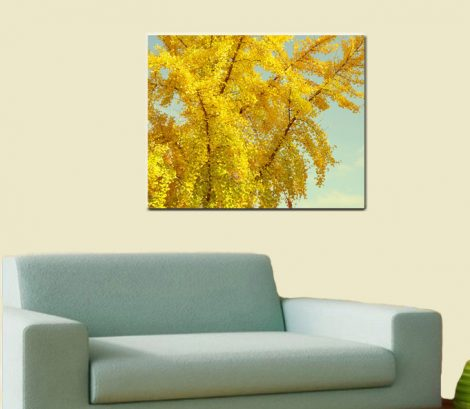 Metal photo print, metal wall art, tree photography  metal art wall decor, aluminum print, yellow mint wall art metal artwork, autumn art