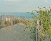 Coastal photography, large beach photography sea shore photo print green turquoise grey coastal wall art, sea grass beach path fence picture