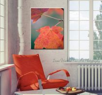 Large photography, leaf abstract canvas art, pink orange artwork, gallery wrap modern photography, botanical wall art, magenta green peach
