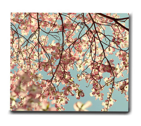 Large botanical wall print, oversized canvas art, dogwood tree fine art floral canvas, baby girl room decor, aqua pale pink bedroom canvas