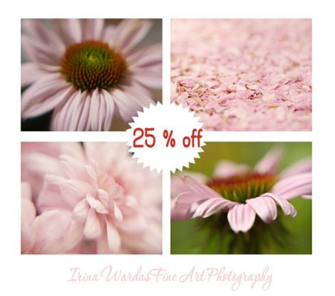 Pink wall art floral photography print set of 4 11x14 wall pictures, pale pink art girls room bedroom wall art, fine art floral photo prints