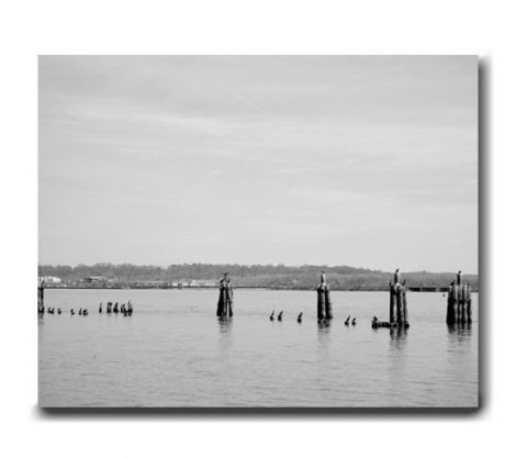Black and white canvas art, grey wall art, Potomac River canvas decor, landscape canvas art, minimal art, grey wall decor canvas print 18x24