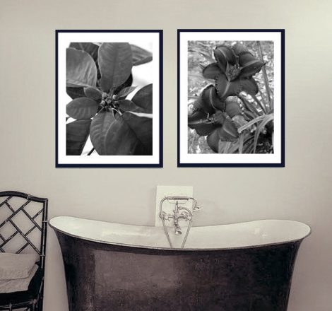 Black and white bathroom art charcoal flower photography, floral pictures wall prints set 2 vertical pictures 12x16, 11x14 photo print decor