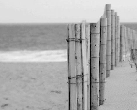Black and white art, beach photo print, grey picture, beach fence, coastal decor, nautical wall art, beach home decor, seashore photo 24x30